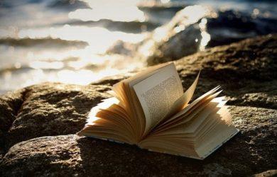 hai letto un buon libro se...